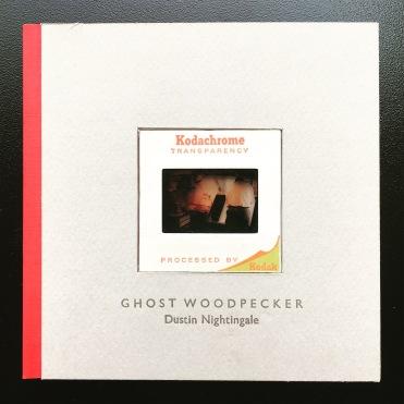 Ghost Woodpecker by Dustin Nightingale