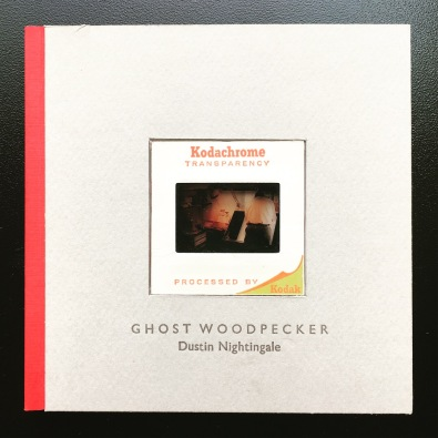 Ghost Woodpecker by Dustin Nightingale